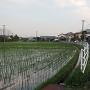 田中城周り
