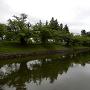 二ノ丸周囲の水堀