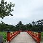 西堀橋と蓮