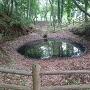 鐘堀(かなほり)池