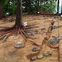 本丸御殿跡 発掘調査状況を南東から