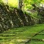 新緑の石垣参道