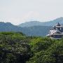 緑に浮かぶ福知山城