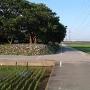 城址公園と新幹線