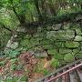 東二の丸門跡横の石垣(1)