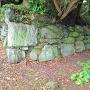 東二の丸と登城路を分ける石垣