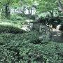 庭園跡が残っています