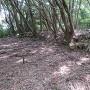 籾蔵の石塀