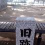 公園のフェンス越し