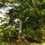 佐和山城碑とその周囲