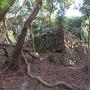 東の丸から東登石垣付近の曲輪に下りる虎口