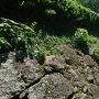 池尻口門横石垣