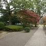 2016年11月訪問旧細川刑部邸