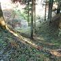 土橋横の竪堀