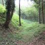 空堀。除草前。