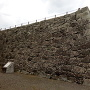 本丸大石垣
