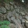 南曲輪石垣