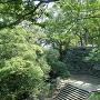 西二の丸からの本丸への石段
