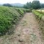 九戸城の本丸跡の石垣