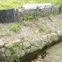 三の丸土塁と基部石垣