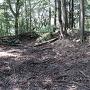 本曲輪土塁