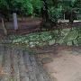 西二の丸跡石垣を、帳櫓跡付近から