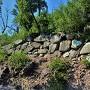 本丸の石垣(南側)