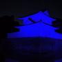 東南隅櫓と東大手門(ライトアップ)
