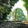登城口を上りきり,古墳上へ