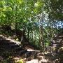 堀切◆茶臼山砦跡