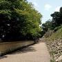 鶴の渓石垣