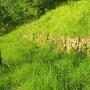 大手坂の石垣