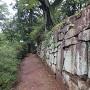 御殿桜(公園の西側)の石垣