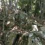 本丸の背後にある岩場の尾根