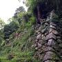 二の丸の野面積み石垣
