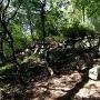山王丸虎口の石垣