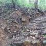 登山道と低石垣