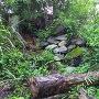 門跡の石垣