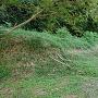 居館の跡の土塁の一部
