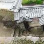 稲荷曲輪門を上から見る
