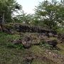 ホオヅキの段石垣