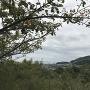 眺望(海と山と名鉄電車)