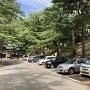 千秋公園内駐車場<39.720524,140.124005>