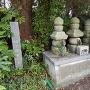 信太範宗の墓