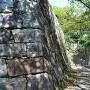 本丸下段石垣と二の丸虎口(南側)