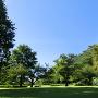 園内風景と青空