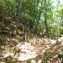 堀切◆南の段