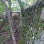 搦め手門付近の石垣