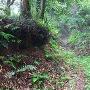 東光寺ビョウ付近の空堀跡