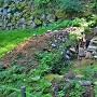 稲荷曲輪石垣(北西側)の発掘現場